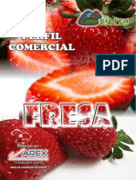 PERFIL COMERCIAL FRESA.pdf