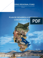22_pdrc_puno_2021.pdf