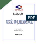 12338-Apostila GEstão Da Qualidade 2010