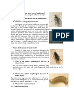 FAQ-Pest_and_Diseases.pdf