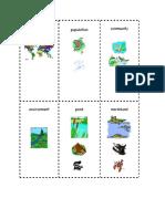 Good Flash Cards -Habitat Flashcards