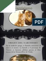 Narcisismo Final