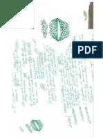 notas de rigor3.pdf
