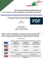 SME Lebanon PDF
