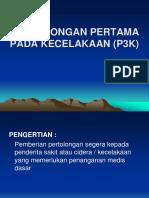 P3K.pdf