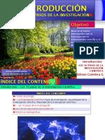 12 1investigacioncientifica 110214185410 Phpapp02