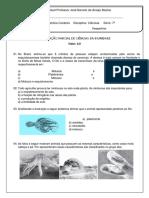 2017 Vespertino Patricia Ciencias 7ano TesteIIUnidade2