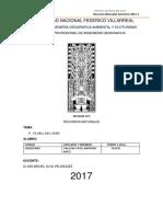 Informe de Rrnn Flora Del Peru