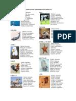 148621982-Clasificacion-Taxonomica-de-Animales.docx