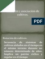 rotacion y asociacion de cultivos.pdf