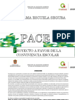 PDF Proyecto Pace-pes 15-16