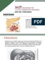Páncreas Endocrino.ppt