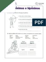 Ficha Hiperonimos
