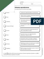 ESTRUCTURAS SISTEMAS REPRODUCTORES.pdf