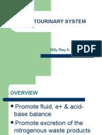 Genitourinary System...pdf