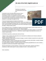 Bagaço_canaonline.com.Br-Comércio de Bagaço de Cana Virou Bom Negócio Para as Usinasvoltar