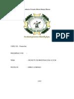 176139432 Proyecto de Investigacion Accion Marcial Doc