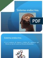 12.- Sistema Endocrino