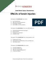 ABI checklist - Effects of brain injuries.pdf