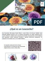 Clase Modelo Inmunologia