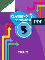 5-GRADO-GUIA-LEIREM.pdf