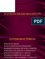 enterobacterias_final2