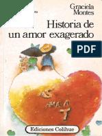 Historia de Un Amor Exagerado