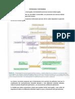 Patologia y Patogenia.docx Expo