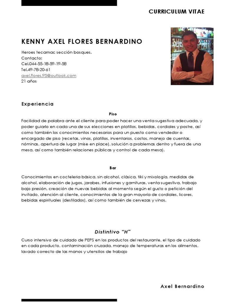 Dorable Curriculum Vitae De Experiencia De Cuidado Galería - Ejemplo ...