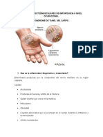 Patologias OM en SO