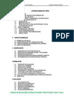 Perfil Sistema Riego Tecnificado