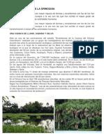 Los Ecosistemas de La Orinoquia