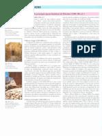 5. Periodos Arqueologicos Em Israel (PEREGO)