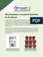 Rudraksha - Article