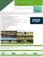 rehaboom 2e druk 2017.pdf