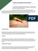 12 Bahaya Malaria Tropika yang Wajib Anda Ketahui.pdf