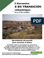 2013 Cartel Encuentro de Transicion