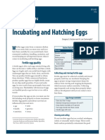 EPS-001-Incubating-and-Hatching-Eggs1.pdf