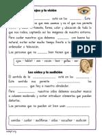 palabras-perdidas-los-sentidos.pdf