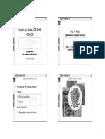 INDICES FISICOS - IZZO.pdf