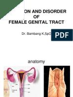 Female Genital Tract