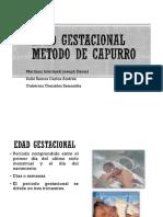 Valoracindecapurro 140908230422 Phpapp01 (1)