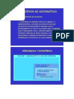 taxonomia quimica.doc