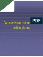 61-AmbS.pdf