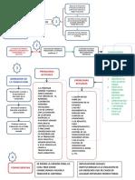 FLUJOGRAMA DE TRADUCCIONES.pdf