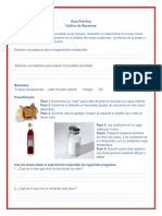 GUIA PRACTICO DE BACTERIAS.pdf