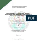 PRUEBAS SUSTANTIVAS.pdf