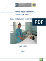 6. GUIAS CIRUGIA1 docx.pdf