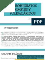 Carbohidratos Simples y Polisacáridos (1)