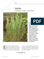 El romero. Planta aromática con efectos antioxidantes